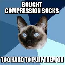 funny cat meme about compression socks