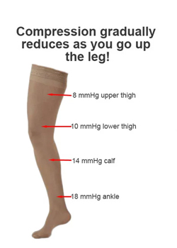 support Hosiery