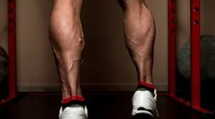 Muscled large calves