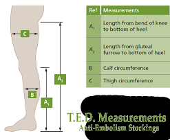 ted hosiery sizing guide