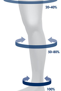 support hoses level of support in percentages at different parts of the leg