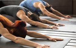 women-doing-yoga-on-yoga-mats-bended