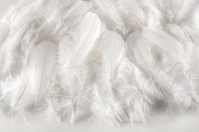 Down feathers from young birds are what used to make duvets unique. These days, duvets can be made from synthetic materials.