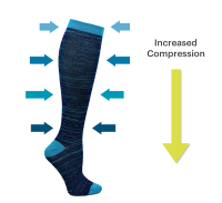 An image showing varying pressure along the length of a compression hosiery